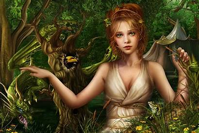 Fairy Forest Fantasy Wallpapers Hair Nature Background
