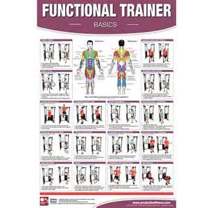 Cable machine exercises - Bodybuilding com Forums