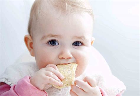 16 Tips For Successful Baby Led Weaning Motherbaby
