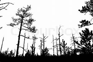 Tree silhouette on white background, vector illustration ...