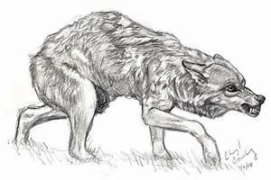 Snarling Wolf by silvercrossfox on DeviantArt