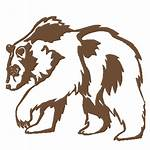 Grizzly Bear Wild Graphics Graphic Decal Drawing