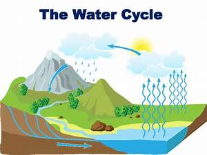 Science Review Of Streams And The Water Cycle