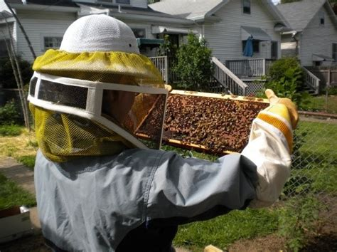Best Images About Bee's Please On Pinterest