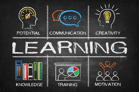 Learning organisations - how they do it | The Change Space