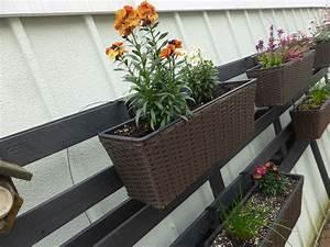 Balkon Wand Verschönern : garten und balkongarten einfache tipps aus der praxis ~ Indierocktalk.com Haus und Dekorationen