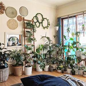 40, Beautiful, Plants, Ideas, For, Home, Decor