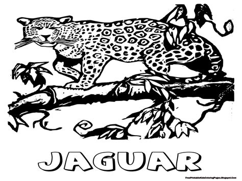 jaguar coloring pages  printable kids coloring pages