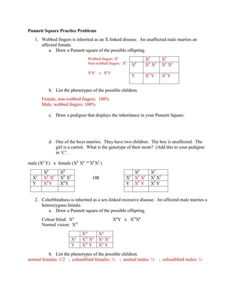 Punnett Square Practice Problems Worksheet Answers  Kidz Activities
