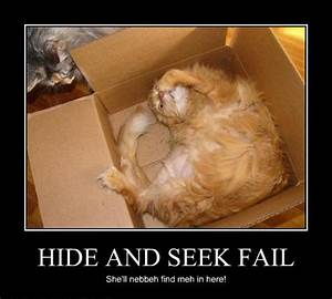 Hide And S : just for fun pic hide and seek fail ~ Frokenaadalensverden.com Haus und Dekorationen