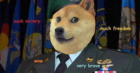 doge army  cat army gag