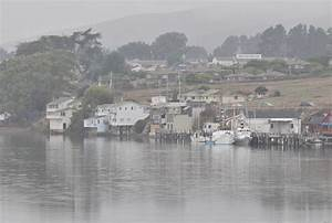 Bcx News The Wharf of Bodega Bay California