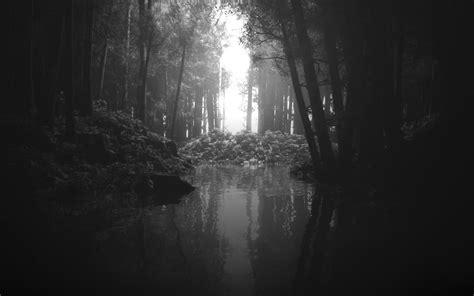 Schöner Hintergrund Schwarz Weiß schwarz wei 223 hintergrund