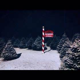the 7 most picturesque christmas tree farms around the
