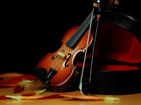 Use the audio track and instrumentals in your next project. Download Instrumental Music Wallpaper Gallery