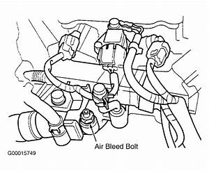 1999 Honda Civic Serpentine Belt Routing And Timing Belt Diagrams