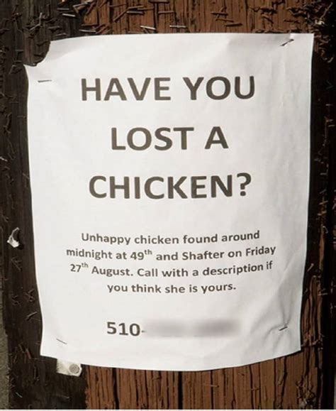 hilarious lost   signs page