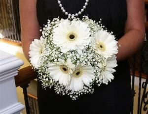 White Gerber Daisy Bouquet   white-gerbera-daisy-bouquets ...