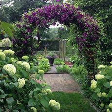 1000+ Images About Great Gardens & Ideas On Pinterest  Container Gardening, Hedges And Perennials