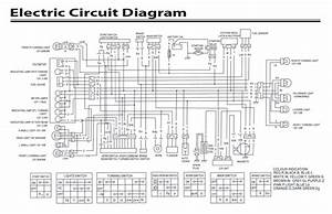 Yamoto 50cc Atv Wiring Diagram Yamoto Gy 200 Bikes Wiring