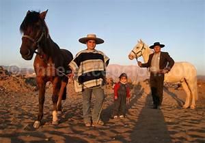 Le huaso et les chevaux du Chili : la culture du rodéo