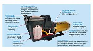 Amazon Com   Hayward Sp2610x15 Super Pump 1 5 Hp Pool Pump