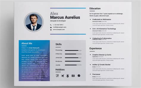 Attractive Cv Templates by 65 Eye Catching Cv Templates For Ms Word Free To