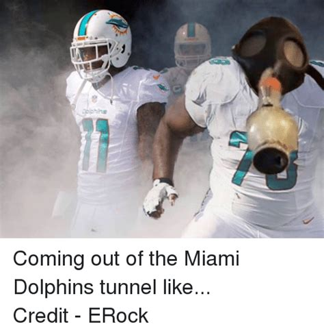 Miami Dolphins Memes - image gallery nfl dolphins memes