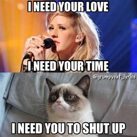 Grumpy Cat Love Meme - top 30 funny cat memes grumpy cat quotes cat jokes and grumpy cat