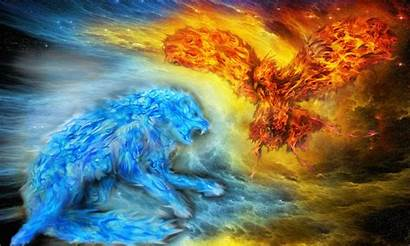 Ice Fire Ev Deviantart Cool Wolf Water
