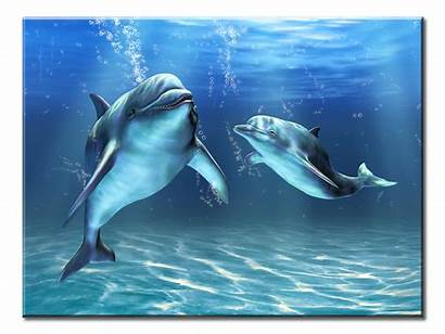 Dolphins Underwater Guaranteed Checkout Safe Dream Dolphin