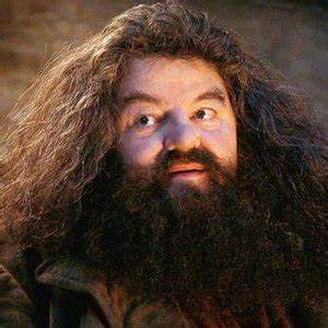 J.K. Rowling Reveals The Sad Truth About Hagrid - ZergNet