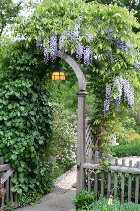 wisteria trellis ideas pin by donna pabst on gates doors windows pinterest wisteria trellis and arbors