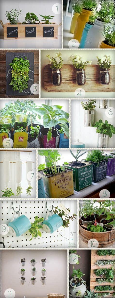 plantes aromatiques cuisine 1000 idées sur le thème jardin d 39 intérieur d 39 herbes