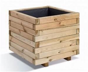 Planter Un Citronnier : culture et entretien d 39 un citronnier en pot ~ Melissatoandfro.com Idées de Décoration