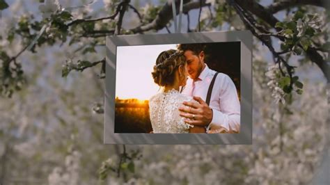 After Effects Templates Free Shared by Share After Effect Project Free Download After Effect