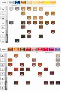 Rusk Color Chart Redken Shades Eq Color Gloss Color Chart