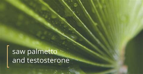 palmetto affect testosterone