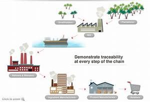 Biofuels Management Certification Services Environment