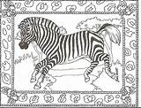 Coloring Zebra Zebras Printable Head Adult Animal Sheets Colouring Animals Boom Adults Rhythm Pdf Getcolorings Band Prints Peace Coloringhome Bestcoloringpagesforkids sketch template