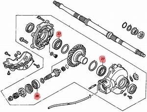 Honda 300 Fourtrax Rear End Diagram