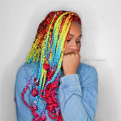Catface Rainbow Ombre Braid Hair X Miccheckk12