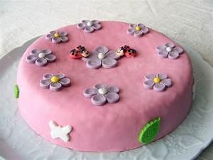 Gateau Anniversaire Petite Fille : r ve de gourmandises g teau d anniversaire girly au chocolat ~ Melissatoandfro.com Idées de Décoration