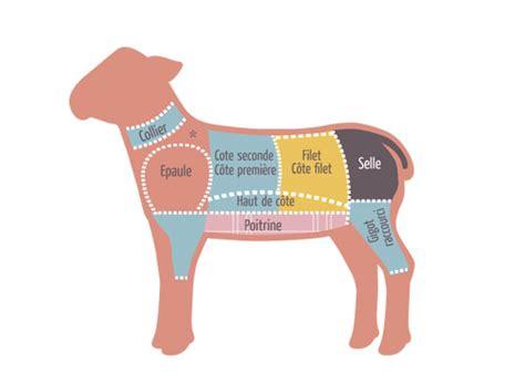 cuisiner des souris d agneau les morceaux dans le mouton et mode de cuisson mkvh