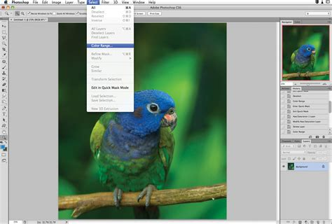 photoshop select color how to use the color range selection in photoshop