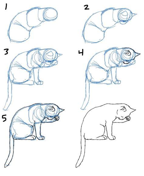 draw cats ideas  pinterest cartoon