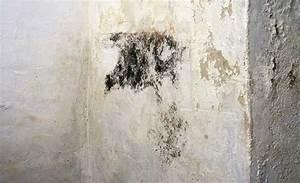 Schimmel An Der Wand : anti schimmel farbe schimmel entfernen jaeger ~ Frokenaadalensverden.com Haus und Dekorationen