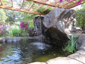 Back Yard Water Feature