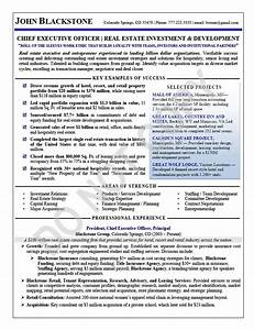 executive resume sample chief executive officer With ceo resume examples