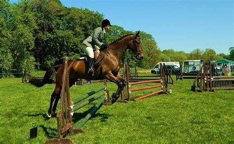 saddles jumping